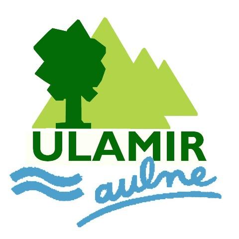 logo_ulamir